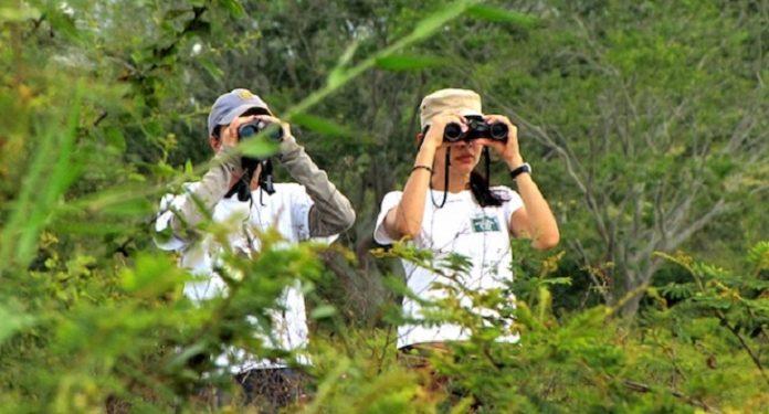 Eligen a Perú como el mejor destino del mundo para la observación de aves