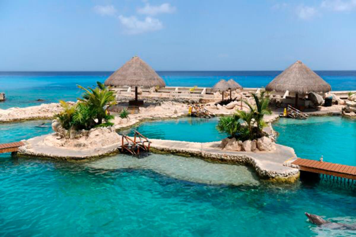 Las aerolíneas y cruceros se reactivan y realizan vistas mas seguidas a la isla de Cozumel, México.