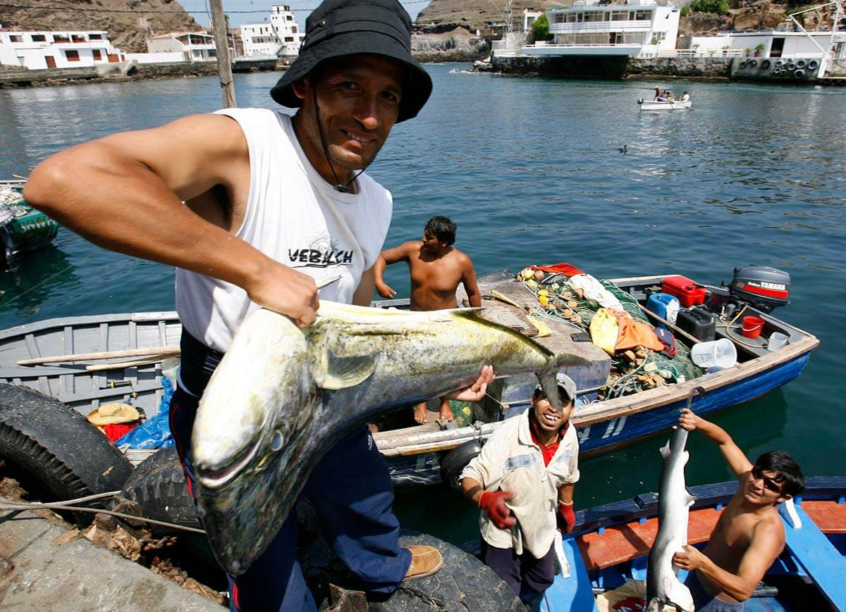 Paracas presentan diversos platos en base a pescados por el día nacional del ceviche.