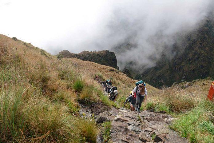 Desde hoy se inicia la reapertura del Camino Inca a la ciudadela de Machu Picchu.