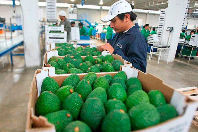 Mincetur: seguir adelante es posible gracias a artesanos, operadores y exportadores.